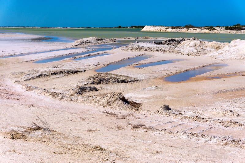 土和水 免版税库存照片