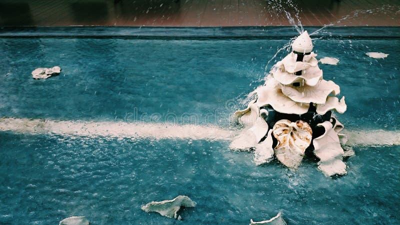 黏土在水池的花喷泉与水飞溅 免版税库存照片