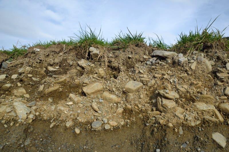 土壤剖面 免版税库存图片