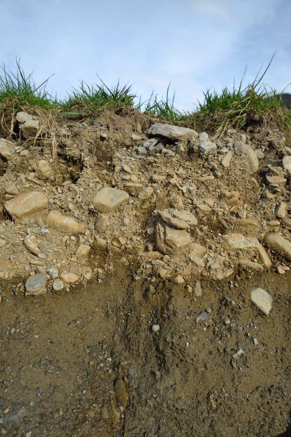 土壤剖面 图库摄影
