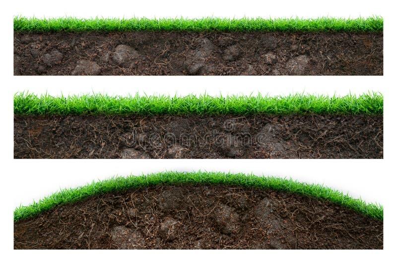 土壤和绿草 库存图片