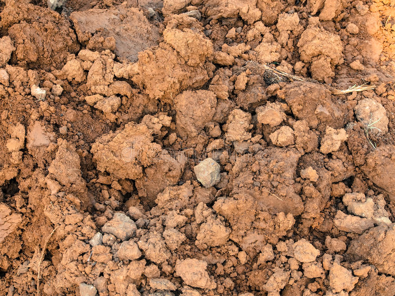 土壤土 免版税库存照片