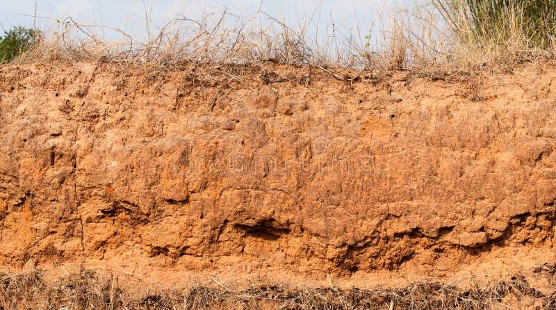 土壤层数 库存照片