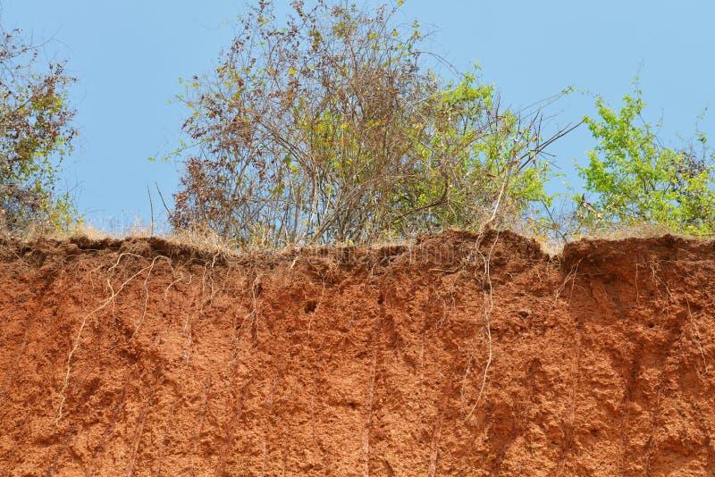 土壤层状裁减  免版税库存照片