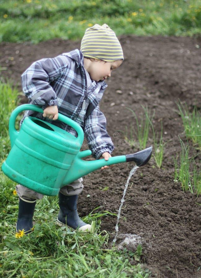 土壤浇灌 免版税库存照片