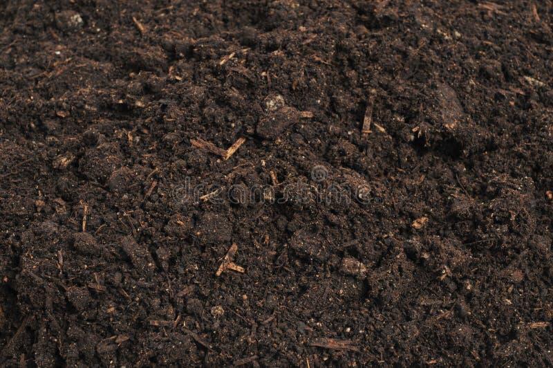 土壤特写镜头  免版税图库摄影