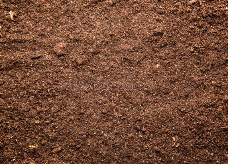 土壤背景 免版税库存照片