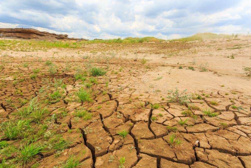 土壤表面裂缝在干旱的区域 免版税库存照片