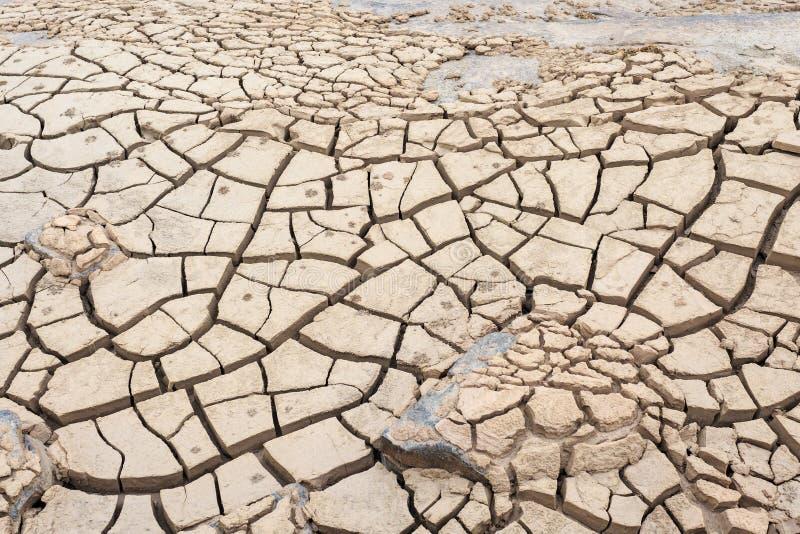 土壤表面裂缝在干旱的区域 库存图片