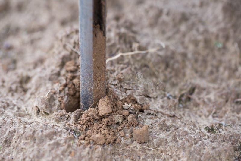 土壤采样 土壤样品采取样品的自动化的探针与土壤探针取样器 环保,有机土 免版税库存照片
