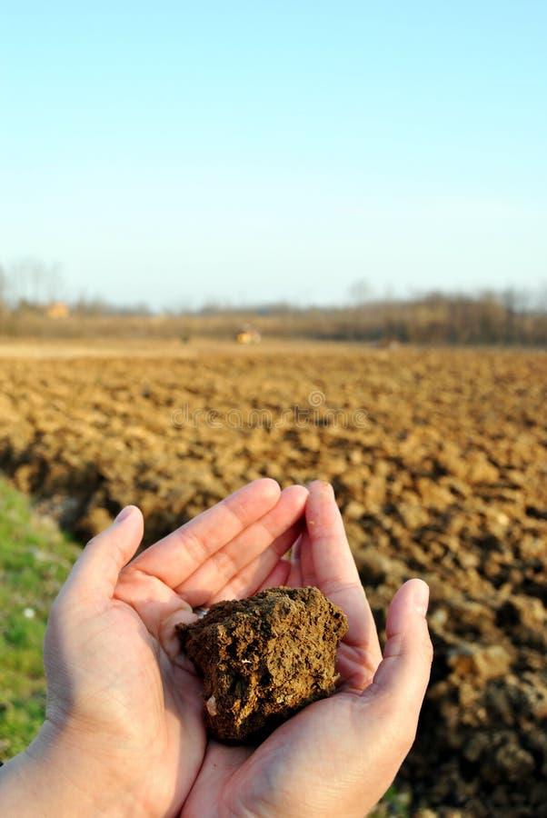 土壤 免版税图库摄影