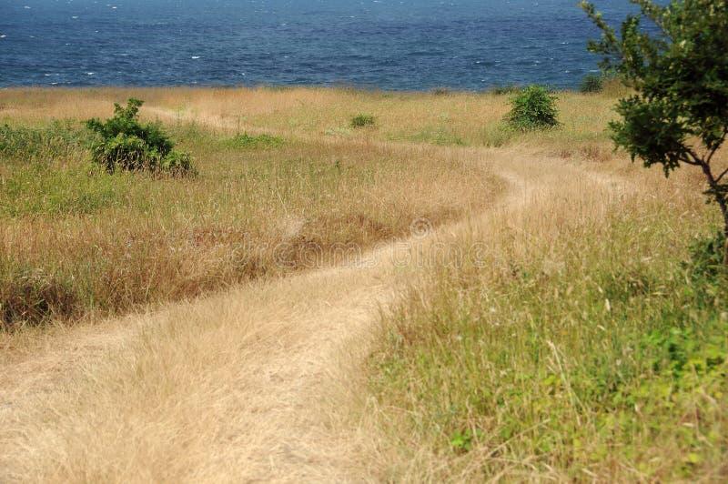 土弯曲道路向海 库存照片