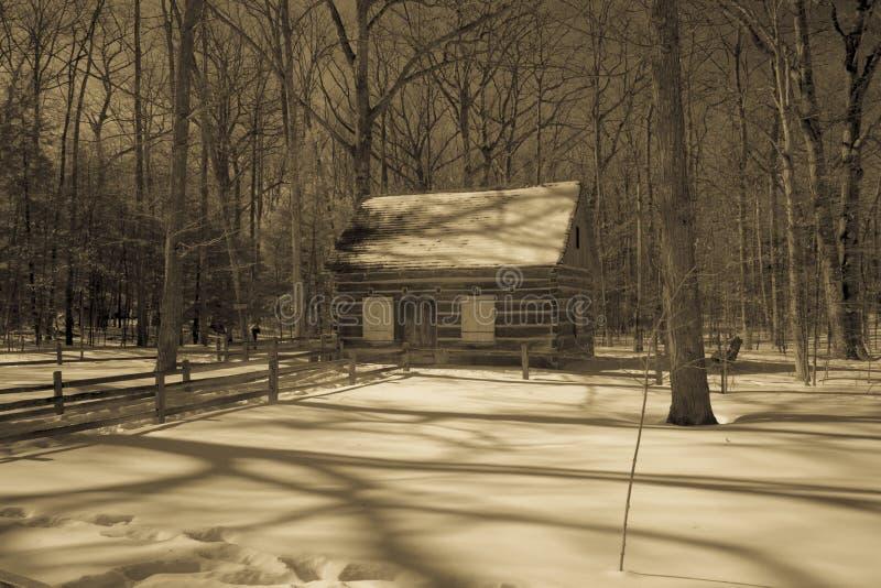 土气客舱在多雪的森林在乌贼属的密执安 库存照片