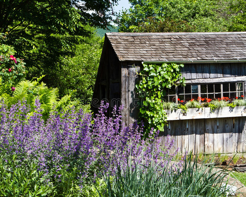 土气庭院流洒与花配件箱 免版税图库摄影