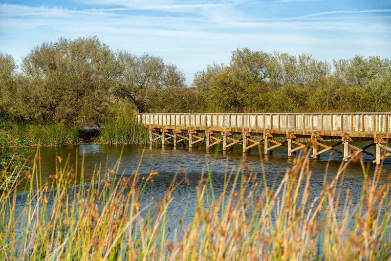 土气木桥通过湖 库存图片