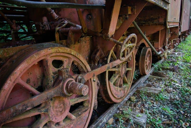 土气火车在密林 免版税图库摄影
