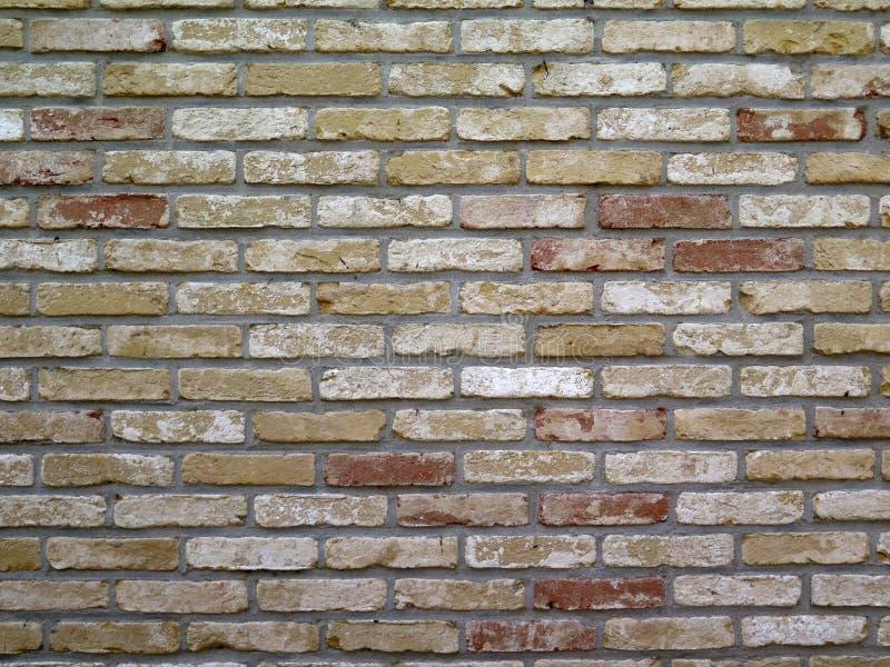 土气砖墙在荷兰渔村 免版税库存照片