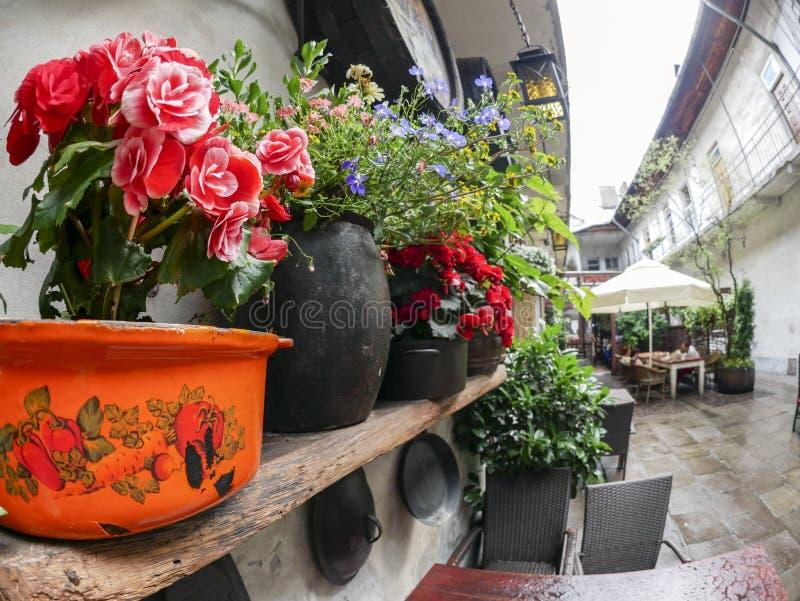 土气餐馆在卡齐米日,克拉科夫, Polan犹太区  免版税图库摄影