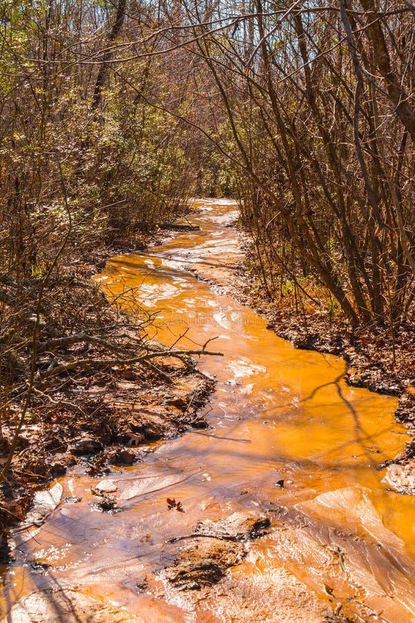 黏土河道在上帝峡谷国家公园,乔治亚,美国 免版税库存图片