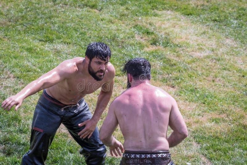 土耳其人民执行的搏斗油搏斗或的油膏 免版税库存照片
