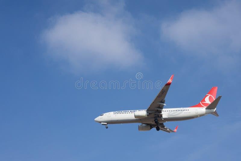 土耳其的航空公司 免版税图库摄影