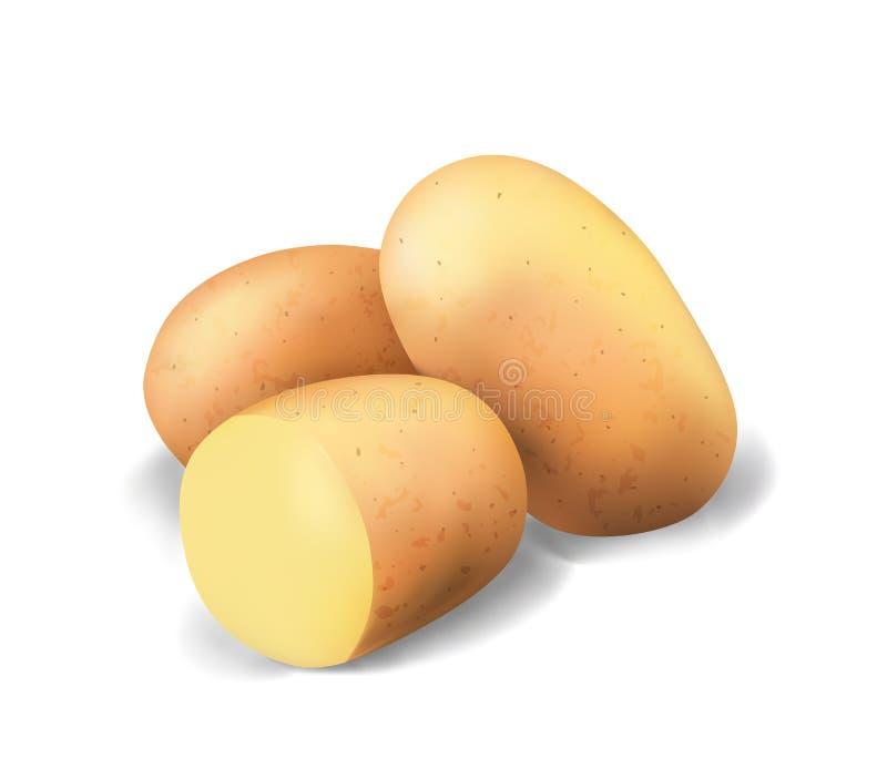 土豆和油炸物芯片 菜3d传染媒介象集合 向量例证