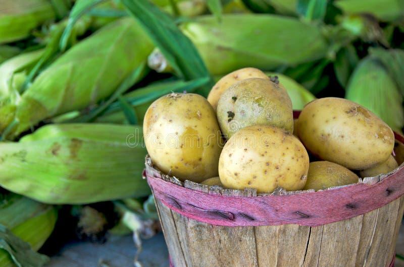 土豆用甜玉米 图库摄影