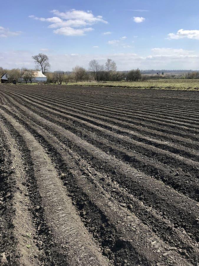 土豆的被犁的领域在开放乡下自然的棕色土壤 库存照片