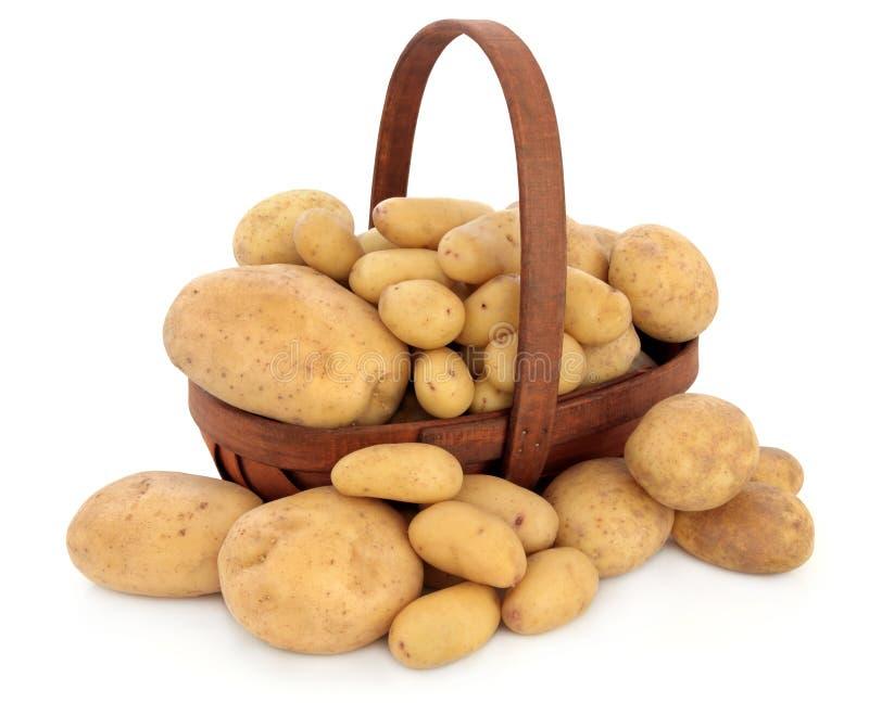 土豆类型 库存照片