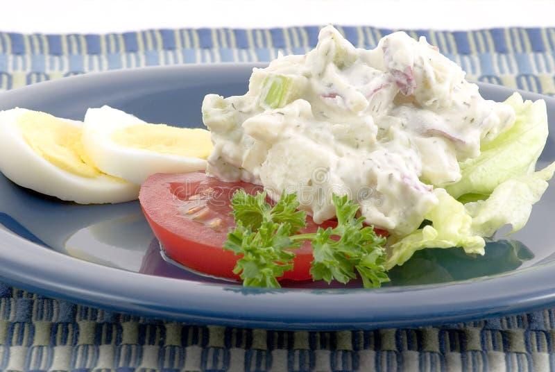 土豆红色沙拉 图库摄影