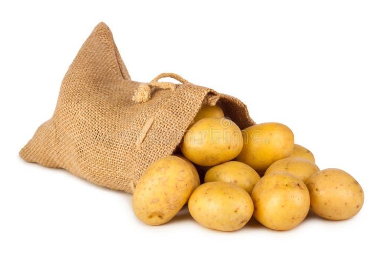 土豆袋子 免版税库存照片