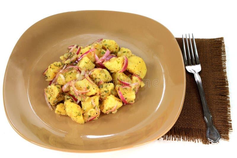 土豆素食主义者平原食家沙拉 免版税图库摄影