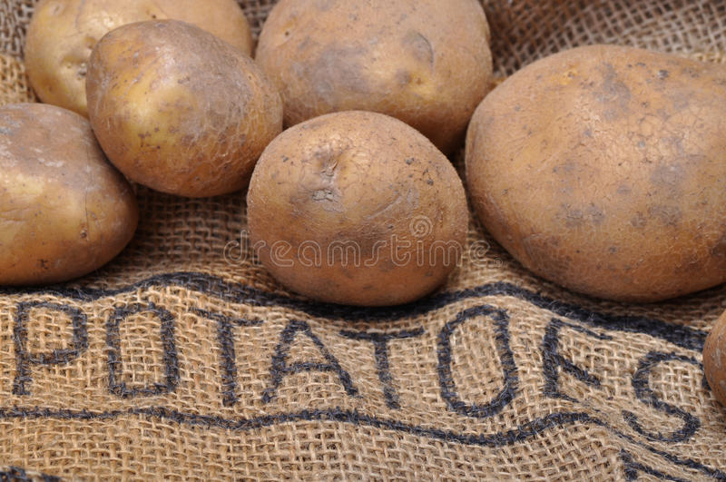 Download 土豆 库存图片. 图片 包括有 大袋, 未煮过, bulfinch, 从事园艺, 问题的, 庭院, 碳水化合物 - 30325227