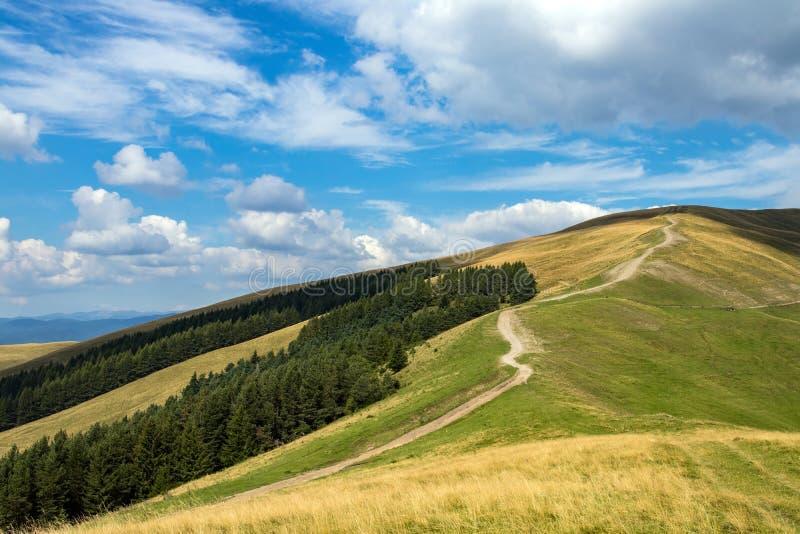 土路在Baiului Mts 免版税库存照片