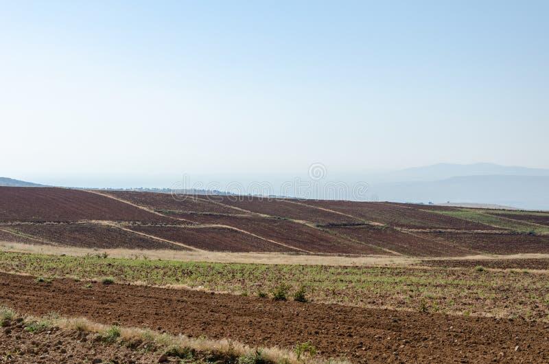 土路遥远的看法在被犁的区域之间的 库存照片