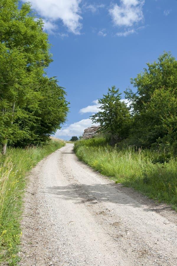 Download 土路 库存图片. 图片 包括有 绿色, 没人, 丹麦, 木柴, 空间, 结构树, 图象, 云彩, 天空, 蓝色 - 15676761