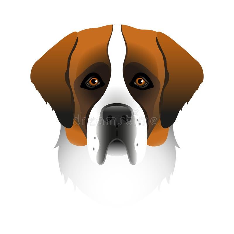 圣伯纳德的被隔绝的五颜六色的头和面孔在白色背景的 线颜色平的动画片品种狗画象 向量例证