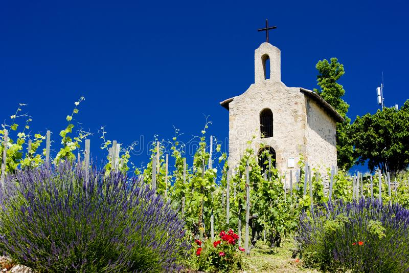 圣克里斯托弗,耶尔米塔格,R盛大cru葡萄园和教堂  库存照片