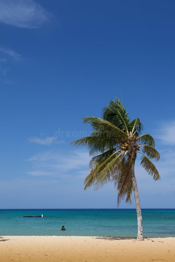 圣克鲁斯海滩 库存照片