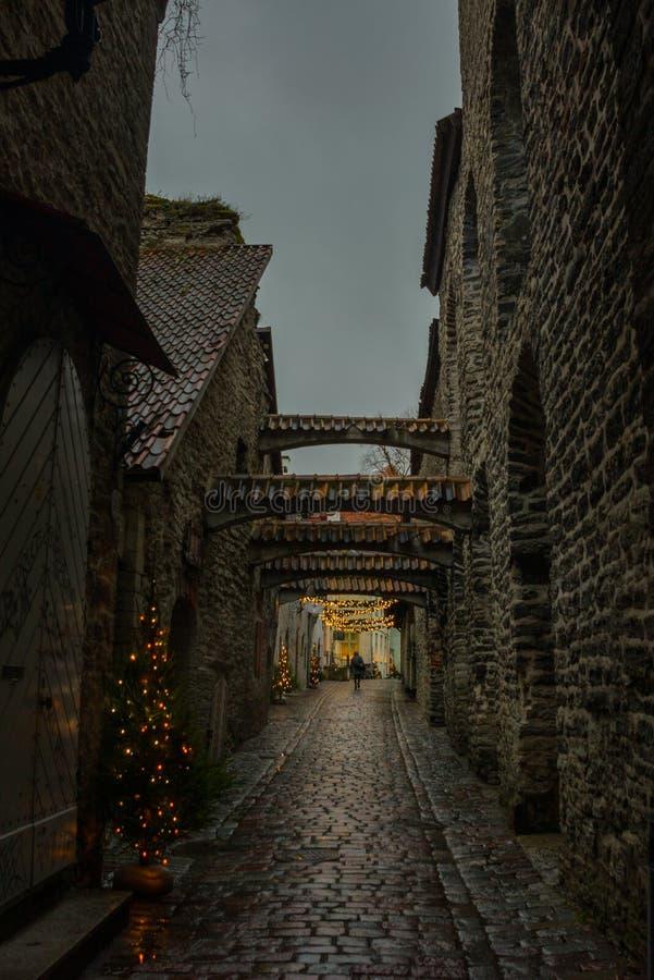 圣凯瑟琳` s段落,塔林,爱沙尼亚老镇看法  免版税库存图片