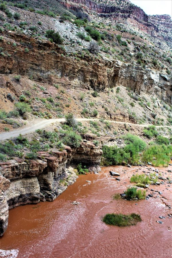 圣卡洛斯亚帕基印第安保护区,希拉县,亚利桑那,美国 免版税库存图片