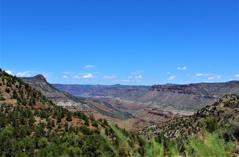 圣卡洛斯亚帕基印第安保护区,希拉县,亚利桑那,美国 图库摄影