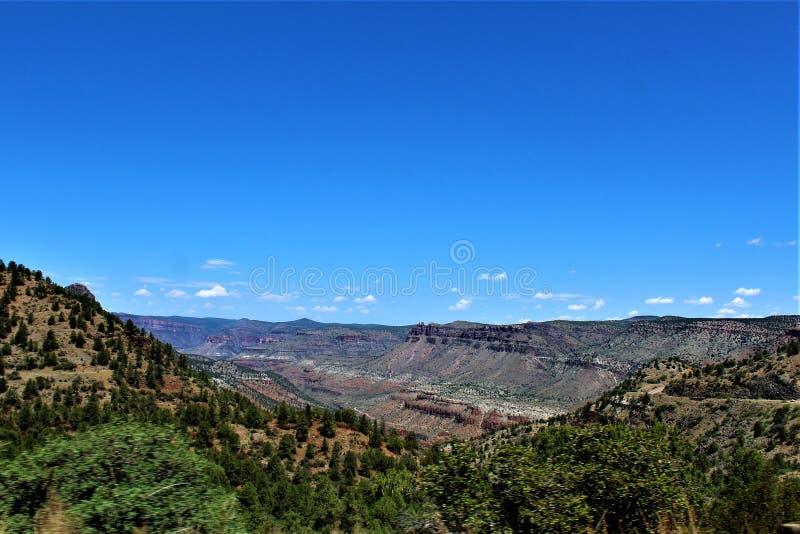 圣卡洛斯亚帕基印第安保护区,希拉县,亚利桑那,美国 免版税图库摄影