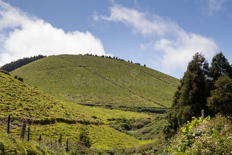 圣地的米格尔,亚速尔群岛国家 图库摄影