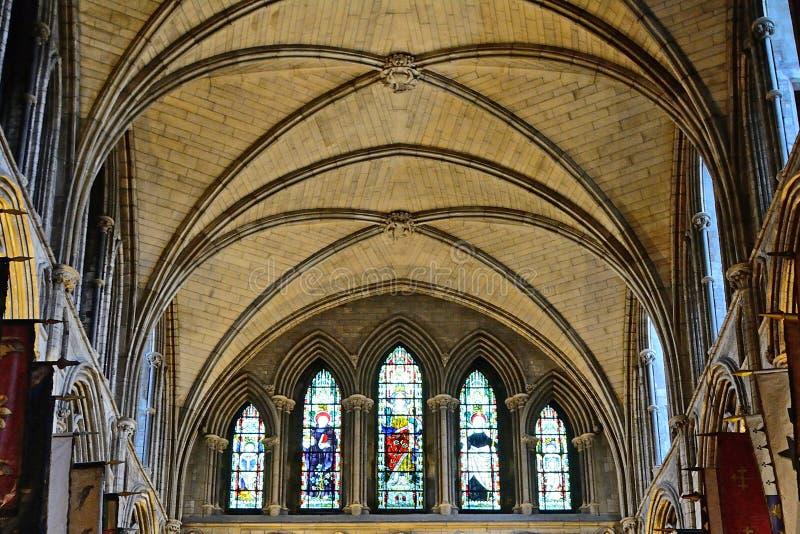 圣帕特里克大教堂,都伯林,爱尔兰 库存图片