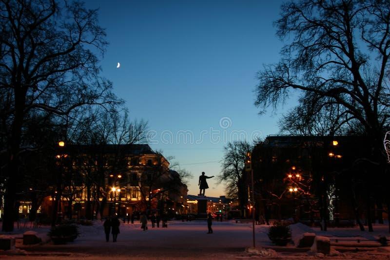 圣彼德堡艺术正方形夜 库存照片