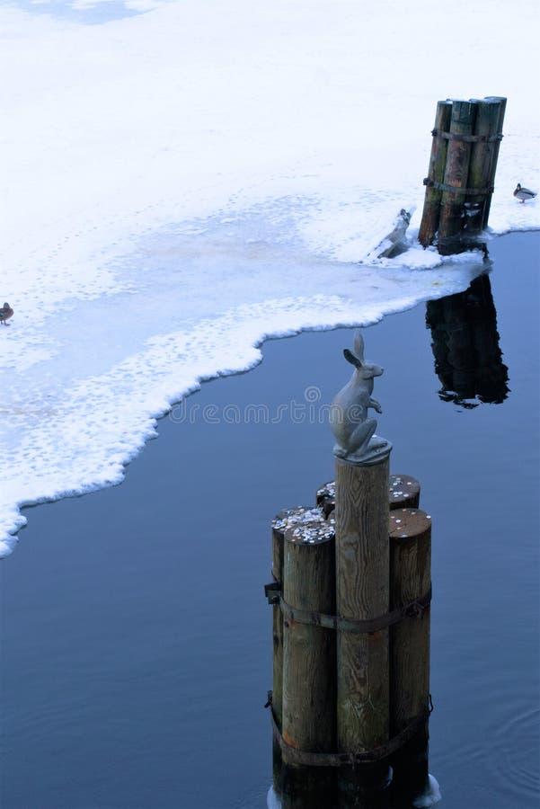 圣彼德堡,俄罗斯,2019年1月2日 在一根杆的一个野兔形象在涅瓦河的嘴在野兔附近海岛的  库存照片