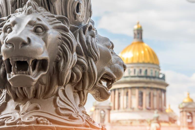 圣徒以撒在焦点外面的` s大教堂,在前景狮子雕塑在柱子的 大教堂圆屋顶isaac ・彼得斯堡俄国s圣徒st 图库摄影
