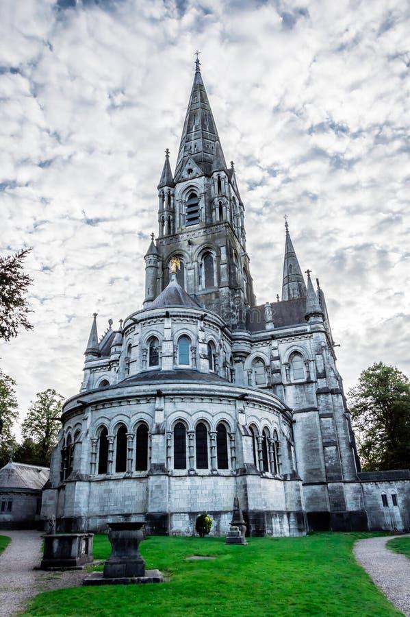 圣徒飞翅纬向条花黄柏的,爱尔兰` s大教堂 图库摄影
