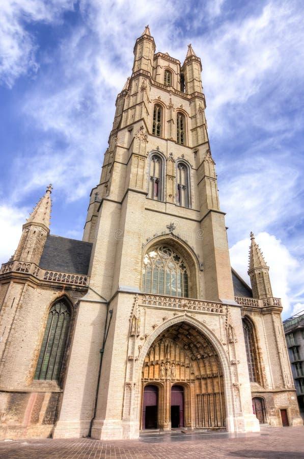 圣徒Bavo大教堂,绅士,比利时 库存图片